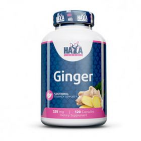 Ginger 250mg 120cps