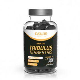 Tribulus Terrestris Xtreme 60cps